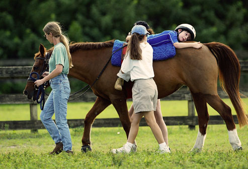 equine assisted therapy One paper discusses theories (often lacking in studies of animal-assisted therapy ) of why animals may be good for human health and development a recent.